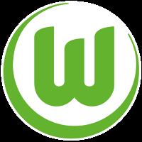 vflwolfsburg's avatar